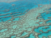 GPUs Help Find a Massive New Reef Hiding Behind Great Barrier Reef