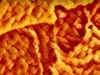 """Say Cheese! Make Your Day """"Flamin' Hot"""" By Turning Your Photos into Cheetos With Artificial Intelligence"""