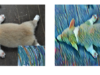 New AI Style Transfer Algorithm Allows Users to Create Millions of Artistic Combinations