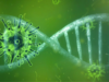 NVIDIA Offers COVID-19 Researchers Free Access to Parabricks