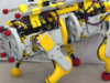 Jetson Project of the Month: OpenDog, a Gesture Controlled Robot