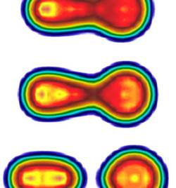 Snapshots of the total density profile of the 240Pu fission process.
