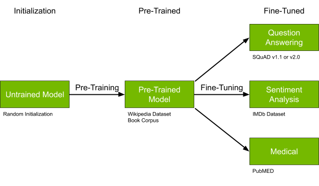 Workflow shows the initialization, pretraining, and fine-tuning steps starting from an untrained model and fine-tuning for a QA, sentiment analysis, or medical dataset.