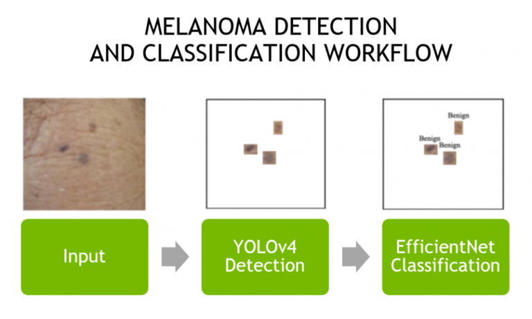 A 3-step diagram showing the workflow for skin mole detection and classification. Starting from an input, moving to the YOLOv4 model for detection, and ending with an EfficientNet model for final classification.