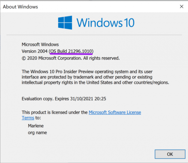 Image of updated Windows 10 OS Build. The build in the image is OS Build 21296.