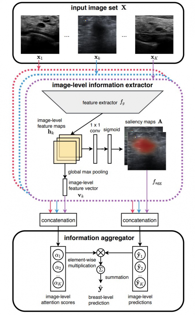 Deep neural network architecture learns from a set of ultrasound images using an image-level feature extractor and an information aggregator to compute the final prediction.