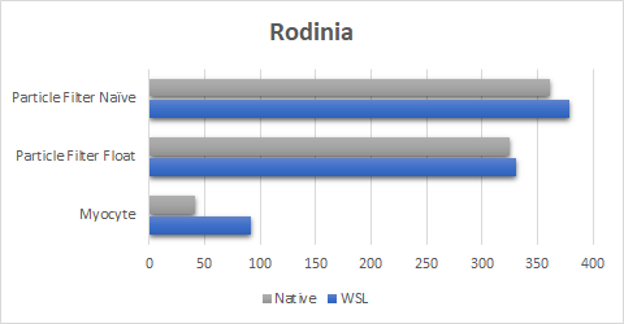 Figure showing near native performance results using the Rodinia benchmark test.