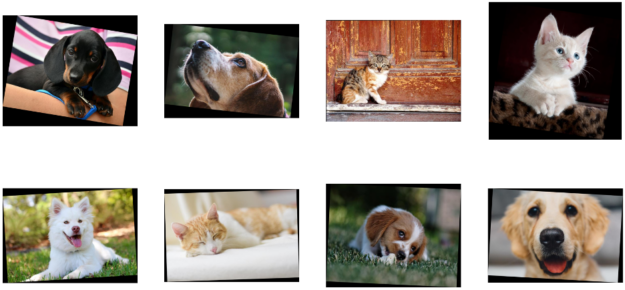 Two rows with four pictures each, showing pictures rotated by different angles, representing the results of the rotate pipeline example.