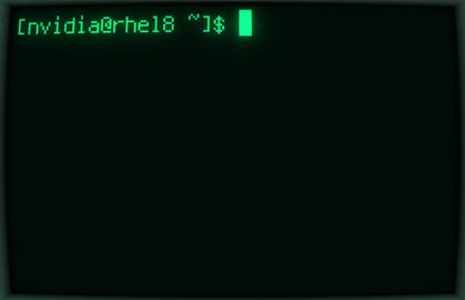 blank-terminal-1